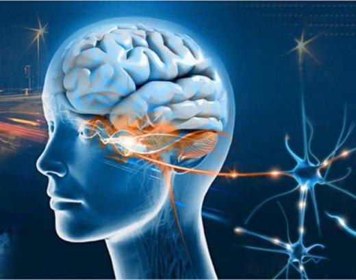 DNR Deep Neural Repatterning